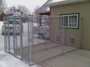 A Backyard Kennel: Home Sweet Home